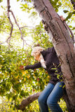 Girl reaching for a branch with apples Royalty Free Stock Photo