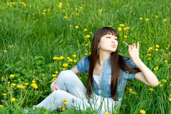 Girl sitting among dandelions Stock Images
