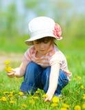 Girl sitting among dandelions Royalty Free Stock Image