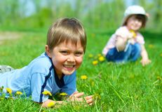 Girl sitting among dandelions Stock Image
