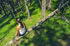 Girl sitting on the fallen tree deep in woods on sunny spring day Royalty Free Stock Photo