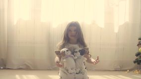 A girl sitting on the floor with two stuffed dogs. Near christmas tree stock video footage