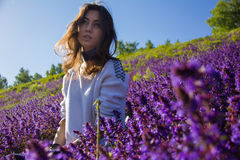 Girl sitting on a flower meadow Stock Images