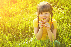 Girl sitting in the grass with dandelion Stock Image