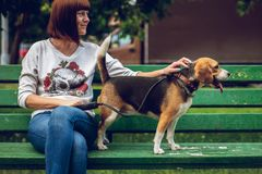 Girl on the green bench with her cute female beagle dog in the park. Summer time. Happy time. stock images