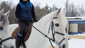 Girl sitting on a horse and resting. At the girl and the horses a break between workouts. Girl smiles. Quiet winter cloudy day. stock video footage