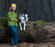Girl sitting with husky dog. In forest stock photography