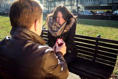 Girl sitting on park, boys gives her a red box gift Stock Images