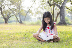 Girl sitting reading a book. Stock Photo