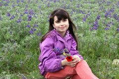 Girl sitting on the spring meadow Royalty Free Stock Image