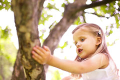 Girl is sitting on tree Stock Photo