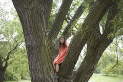 Girl Sitting On Tree Branch Stock Image