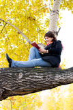 Girl sitting on the tree and reading a book Royalty Free Stock Photo