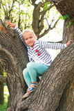 Girl sitting on a tree in summer Royalty Free Stock Image