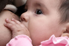 The girl six months Royalty Free Stock Photography