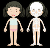 Girl and skeleton diagram Royalty Free Stock Photo
