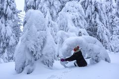 The girl in ski suite sits on the lawn covered with snow the nice trees are standing poured with snowflakes in frosty winter day. The girl in ski suite sits on stock images