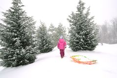 Girl with sled. Little girl walking with sled royalty free stock images