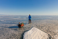 Girl with a sledge and trekking pole is on the ice of Lake Baika Royalty Free Stock Images