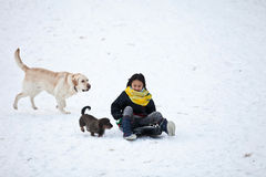 Girl sledging with her dog Stock Photos