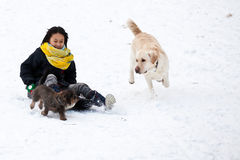Girl sledging with her dog Stock Image