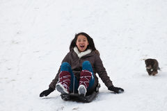 Girl sledging with her dog Stock Photography