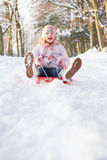 Girl Sledging Through Snowy Woodland Royalty Free Stock Image