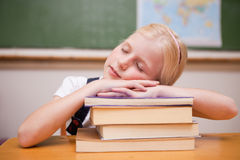 Girl sleeping on her books Royalty Free Stock Photography