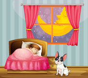 A girl sleeping in her room with a dog Royalty Free Stock Images
