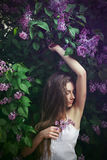Girl sleeping in lilac Royalty Free Stock Images