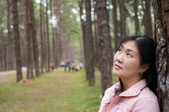 Girl with a smail. In pine plantation Stock Photo