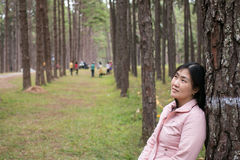 Girl with a smail. In pine plantation Stock Images