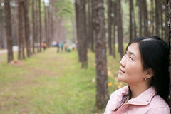 Girl with a smail. In pine plantation Royalty Free Stock Images