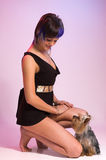 The  girl and small dog Stock Images