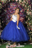 Girl in a smart blue and white ball gown Royalty Free Stock Photos