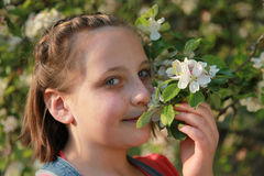 Girl smelling the blossoms of an apple tree Royalty Free Stock Images