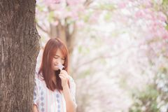 Girl smelling cherry blossom Stock Photos