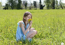 Girl smelling dandelions Stock Images