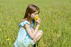 Girl smelling dandelions Royalty Free Stock Photography