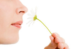 Girl smelling a flower Stock Image