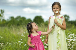 Girl smelling flower Royalty Free Stock Images