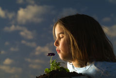 Girl smelling flower. Young girl smelling a pansy flower against cloudy sky Royalty Free Stock Photography