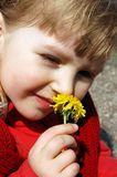 Girl smelling a flower Royalty Free Stock Image