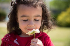Girl smelling flower. Hispanic child smelling yellow pansy Royalty Free Stock Photography