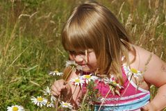 Girl smelling flowers. Cute young girl smelling daisy flowers in summer meadow Stock Photo