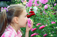Girl smelling flowers Royalty Free Stock Image