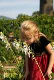 Girl Smelling Hosta Stock Photos