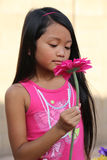Girl Smelling Pink Daisy Flower Stock Image