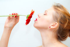Girl smelling red daisy. Portrait of beautiful young woman smelling red daisy Royalty Free Stock Photos