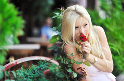 Girl smelling a rose. Outdoors royalty free stock images